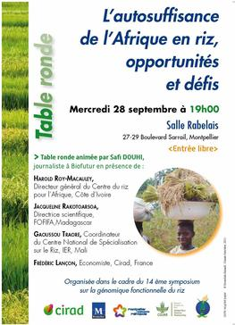 Poster for the round table on. © Cirad, 2016